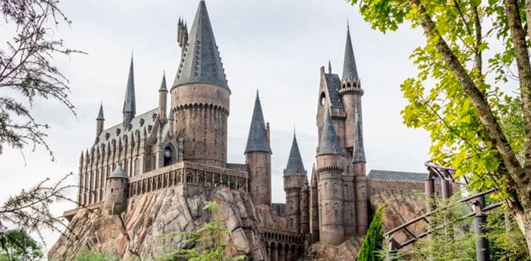 Como ir para Hogwarts? AmoCanecas.com